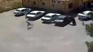 Şanlıurfa'daki 'kan davası' cinayeti kamerada