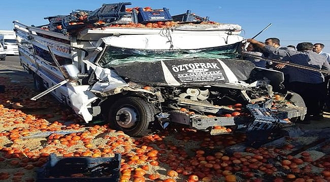 Sebze Yüklü Araç Kaza Yaptı: 1 Ölü