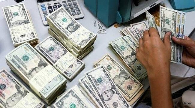 Türkiye dahil 8 ülke dolar kullanmayacak