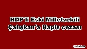 HDP'li eski milletvekili Çalışkan'a hapis cezası
