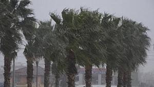 Şiddetli rüzgar Urfa'yı etkiledi
