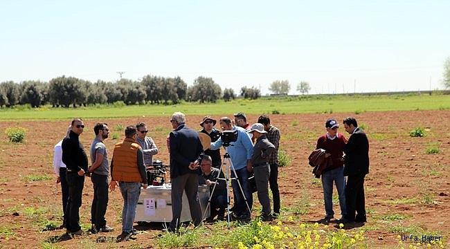 GAP'ta teknoloji destekli tarım dönemi