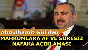 Bakan Gül'den Mahkumlara Af ve Süresiz Nafaka Açıklaması