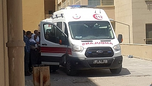 Şanlıurfa'da arazi kavgası: 8 yaralı