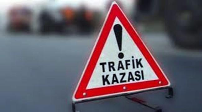 Şanlıurfa'da otomobil devrildi: 2 yaralı