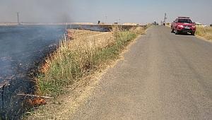 Anız ateşi Urfa'da buğday tarlasını yaktı