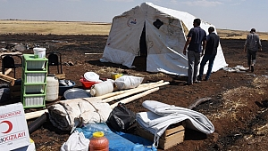 Anız Yangını Kaldıkları Çadırlarını Kül Etti