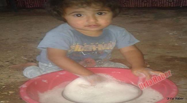 Şanlıurfa'da akrebin soktuğu çocuk öldü