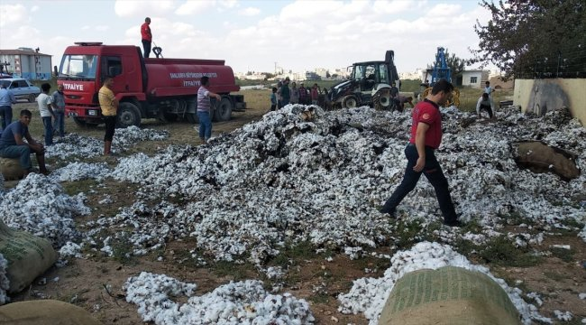 Şanlıurfa'da hasat edilen pamuk yandı