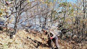 Baykan kırsalında yangın