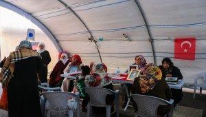 Diyarbakır annelerinin evlat nöbeti 80'inci gününde