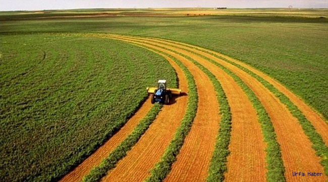 Tarım arazileri miras yolu ile bölünemeyecek