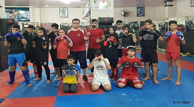 Urfa'lı Kick Boksçular Türkiye Şampiyonasına Hazır
