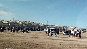 Urfa'da açık alanda kumar oynuyorlar iddiası