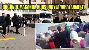 Urfa'lı Damat Maganda Kurbanı Oldu