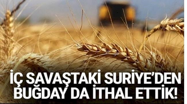 Suriye'den Urfa'ya buğday zeytin ithalatı