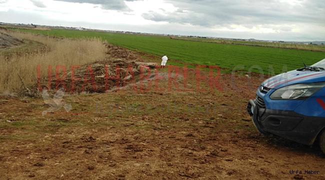 Urfa'da Kaybolan Genç Ölü Bulundu
