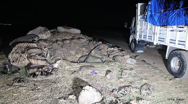 Urfa'da Petrol hırsızlığı: 14 tutuklama