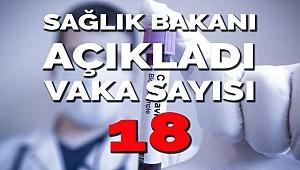 Türkiye'de Corona vaka sayısı 18 oldu