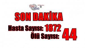 Türkiye'de ölü sayısı 44'de çıktı
