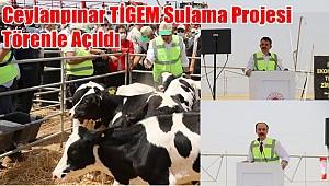 Ceylanpınar TİGEM Sulama Projesi Törenle Açıldı