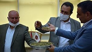 Urfa'da ilk hasat töreni yapıldı