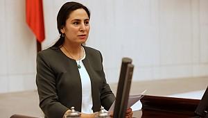 HDP'li Sürücü'den DEDAŞ için kanun teklifi