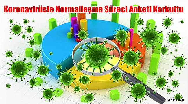 Koronavirüste Normalleşme Süreci Anketi Korkuttu
