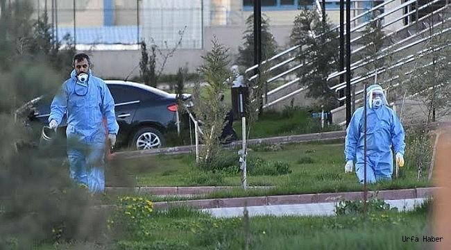 Urfa'da 11 ilçede 62 adres karantinaya alındı