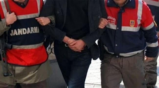 Urfa'da cep telefonu kaçakçılığı operasyonu