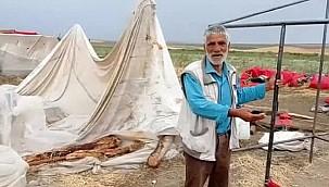 Urfalı Tarım İşçilerini Kum Fırtınası Vurdu