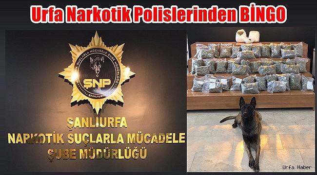 Urfa Narkotik Polislerinden BİNGO
