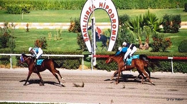Şanlıurfa'da at sahipleri Hipodromdan şikâyetçi