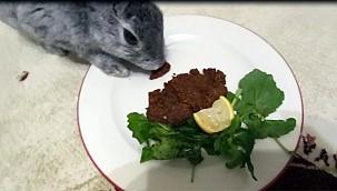 Bu Tavşan Önce Lahmacun Sonra Çiğköfte Yedi