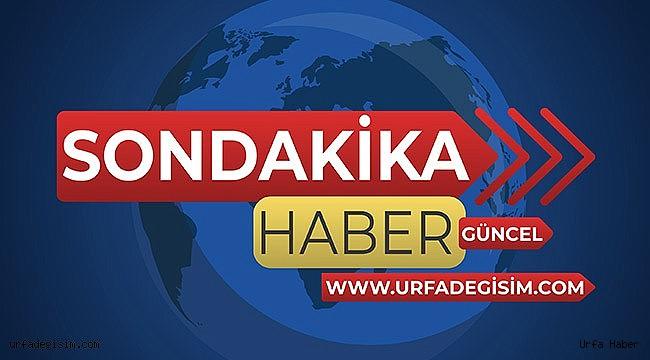 Urfa'nın ilçesinde 3 cansız beden bulundu