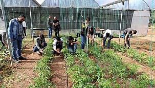 DEVA Partisi'nden 'Tarım Liseleri' projesi