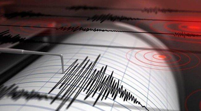 Muğla ve Bingöl'de peş peşe deprem
