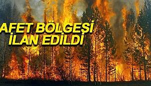 Orman Yangınları Bölgesiyle İlgili Flaş Gelişme!