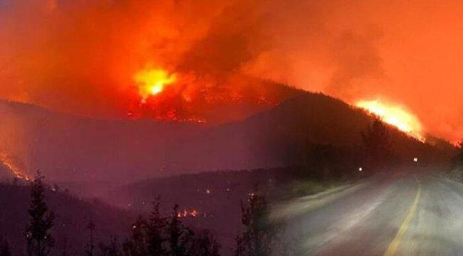 Milas'taki yangın Bodrum'a sıçradı! Vatandaşlar teknelerle tahliye edildi
