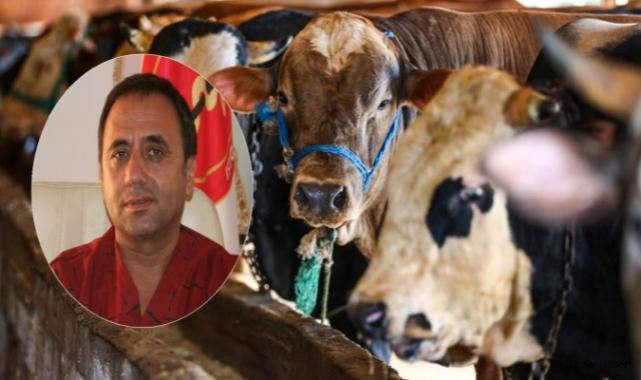 Açıkgöz: Urfa, Hayvancılık Anlamında Türkiye'nin Merkezi