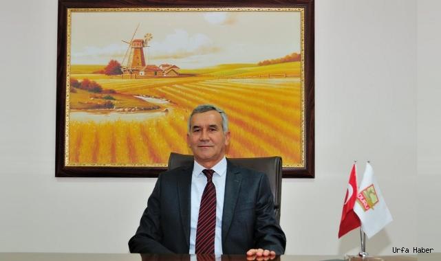 Buğday üretiminin geleceğini riske atılıyor